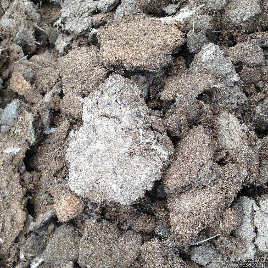 什摸样的有机肥效果好?有机肥可以替代水溶肥吗?-寿光红旗科技有限公司