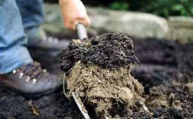 有机水溶肥和农家肥比起来有何优点?-寿光红旗科技有限公司