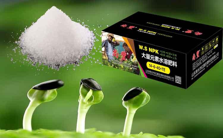 磷酸二氢钾的正确使用方法!请看寿光水溶肥专家为您解析!-寿光红旗科技有限公司