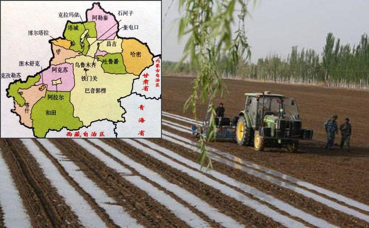 在新疆阿克苏市哪里可以购买到质优价廉的产品?