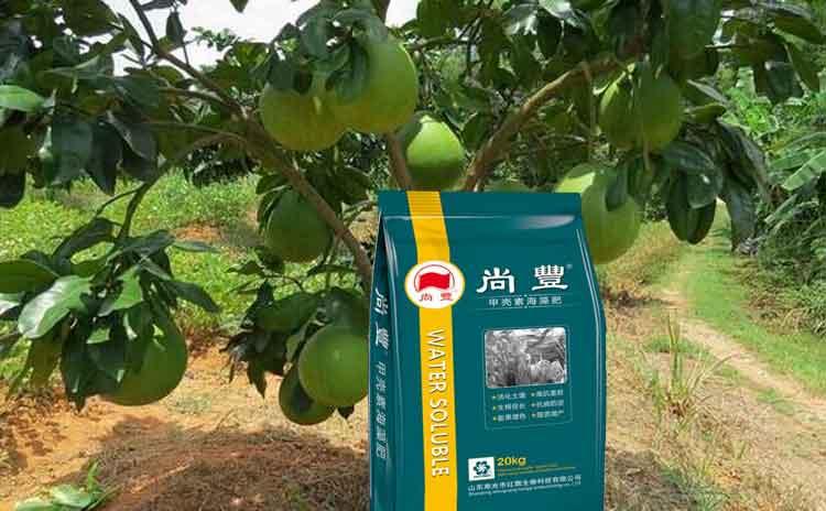 为何专家建议要在九月份使用底肥?果树用肥方法!