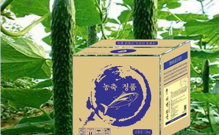 刚定植上的黄瓜冲施什么水溶肥好?如何才能够让黄瓜增产增值?-寿光红旗科技有限公司